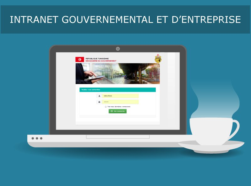 INTRANET GOUVERNEMENTAL ET D'ENTREPRISE